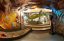 Музей «П.В.Алабина» - Главная экспозиция